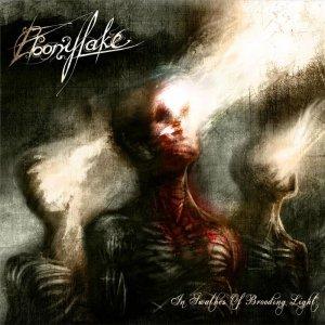 Ebonylake – In Swathes Of Brooding Light CD