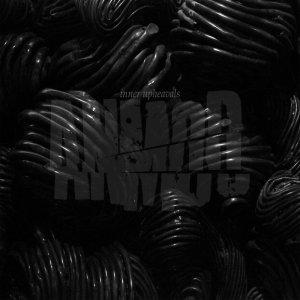 Anmod – Inner Upheavals CD
