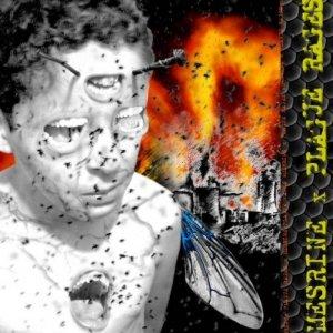 Mesrine / Plague Rages CD